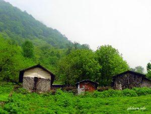 روستای پلت کله سر