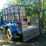 100-year old trucks