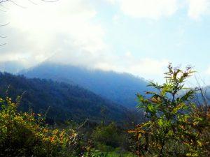 Gishar-Kuh view from Mish sere dasht walk