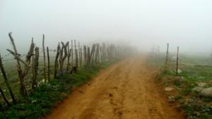 Fog in Javaher-Dasht