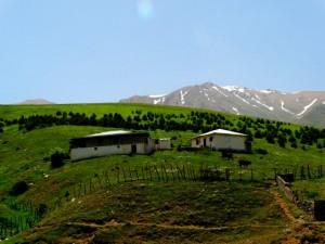 Javaher-Dasht pristine view