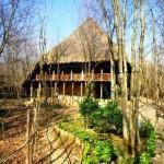 پوشش گالی سقف خانه ها
