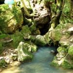 Damkesh Spring